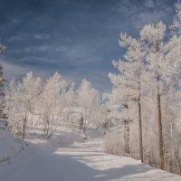 winter road :: Dmitry Ozersky