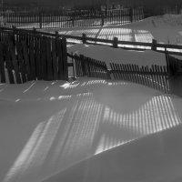 Полосатый снег :: Сергей Шаврин