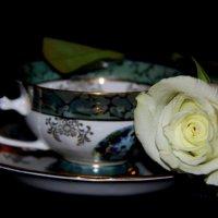 Цветочное настроение :: Ирина Фирсова