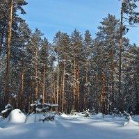 Зима уходящая :: Виктор Четошников