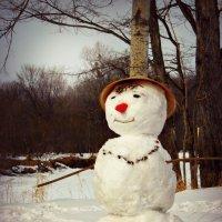 снеговичок :: Tatyana Belova