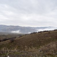 Туман :: Виктория Большагина