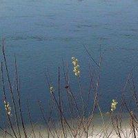 Весна на Иркуте :: alemigun