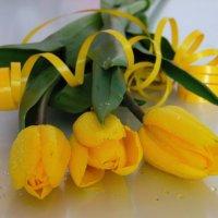 Тюльпаны к празднику. :: nadyasilyuk Вознюк