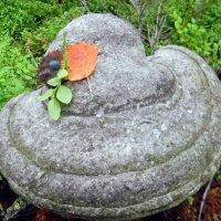 шляпка Осени :: Надежда Ерыкалина