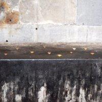 Монеты в храме :: Виктория Большагина