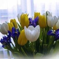 Дарите женщинам цветы! :: Александр Рейтер