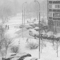 Снегопад, снегопад ... :: Алексей Окунеев