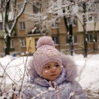 зимой :: Ю Каролина