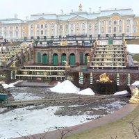 Весна в Петергофе :: Наталья