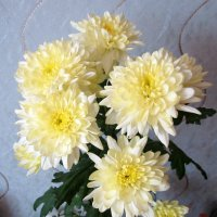 9 марта ...остались только цветы . :: Мила Бовкун