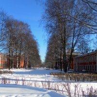 Зимний день :: Агриппина