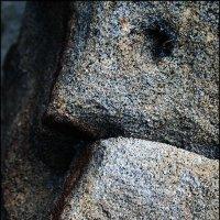 """""""Каменный портрет. Профиль"""" :: Dimitry К"""