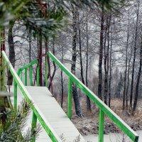 мостик :: Favel Гаврилюк