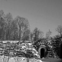 Зима покидает владенья свои... :: Tatiana Markova