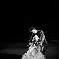 балет :: Максим Криштоп