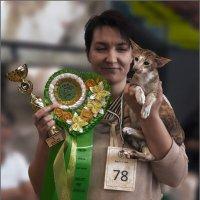 Призёр-из серии Кошки очарование мое! :: Shmual Hava Retro