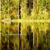 зеркальное отражение.... :: Марина Харченкова