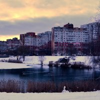 Утиные гонки или еще раз про зиму :: Валентина Данилова