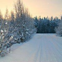 все еще зима :: Наталья