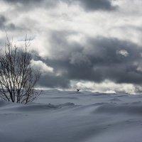 Между небом и землей... :: Sergey Apinis