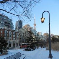 Вечереет... Торонто, февраль... :: Юрий Поляков