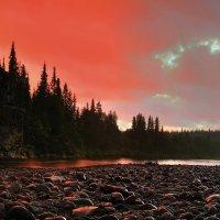 Закат на реке Косью в Национальном парке Югыд ва :: Сергей Соколов
