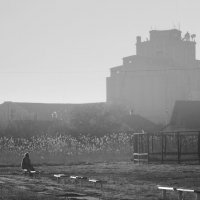 Башня :: Алексей Салло