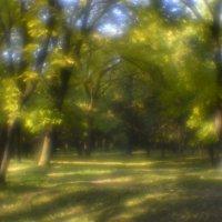 Осень в курортном парке :: Сергей