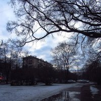 IMG_2995 - Не вчерашний вечер :: Андрей Лукьянов