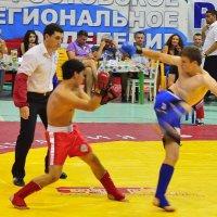 Спорт. :: Раскосов Николай
