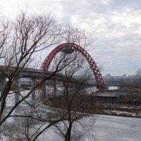 Мост и весна. :: prostow
