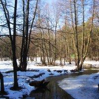Весна. Реки вскрылись ото льда :: Андрей Снегерёв