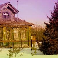 Когда весна глядит в глаза :: Juliya Fokina