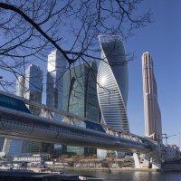 Вертикальные и горизонтальные небоскребы с удивленными весенними дервьями. :: Анатолий Корнейчук