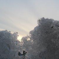 маленькое сердечко может растопить глыбы льда в ваших сердцах! :: tgtyjdrf