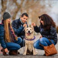 Собака — это не просто друг человека, это часть Семьи :) :: Алексей Латыш
