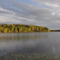 Природа Красноуральска :: Виктор Башкирцев