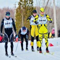 Упорная борьба :: Viktor Pjankov