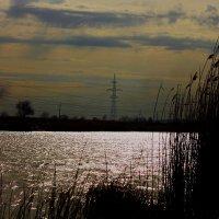 Река и ветер :: Юрий Гайворонский