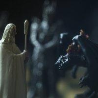 Lord of the rings :: Ivan Pavlov