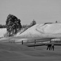 Зима в монохроме. :: mike95