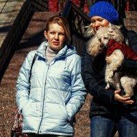 "Девушки и ВЕСНА. Фото№3 ""Собака друг человека ?!"" :: Владимир Бровко"