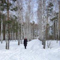 15 марта . Сибирь . :: Мила Бовкун