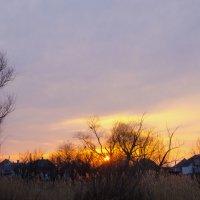 раннее утро... :: Ксения Довгопол