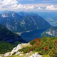 Австрия, Зальцкаммергут, Дахштайн, высота 2200м. :: Тиша