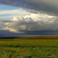 Нахмурилось небо сурово... :: nadyasilyuk Вознюк