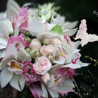 Цветочные брызги :: Марина Щуцких