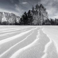 волны из снежинок :: Vladimir Beloborodov