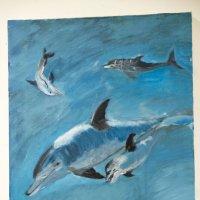 Дельфины :: Александр Деревяшкин